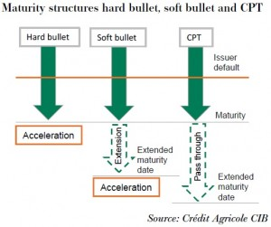 Maturity structures